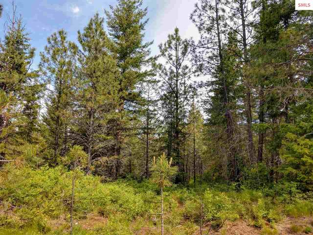 L3B105 W New Hampshire St, Spirit Lake, ID 83869 (#20201981) :: Northwest Professional Real Estate