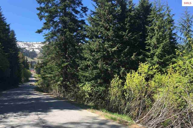 Lot 10 Telemark Rd, Sandpoint, ID 83864 (#20202022) :: Mall Realty Group