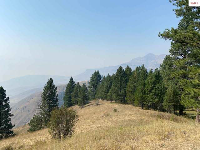 100 ac High Range Rd, Out of Area, ID 83522 (#20202819) :: Mall Realty Group