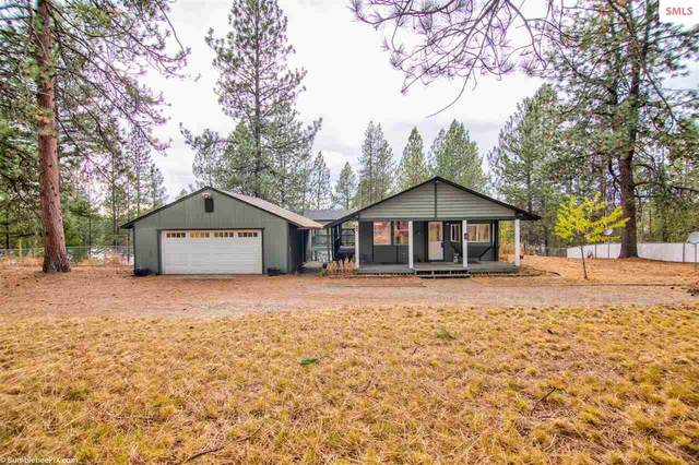 38003 N Sheets Rd, Other (Spo), WA 99009 (#20202964) :: Northwest Professional Real Estate