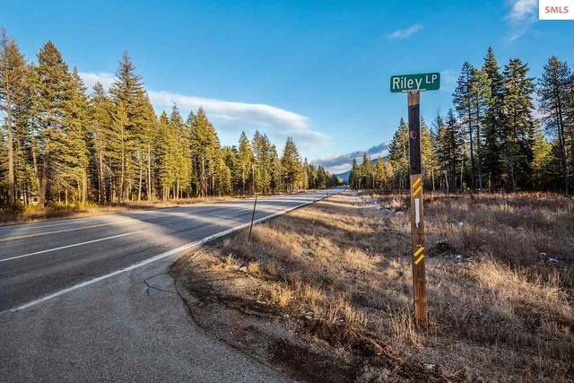 Lot 10 E Riley Loop, Athol, ID 83801 (#20202965) :: Mall Realty Group