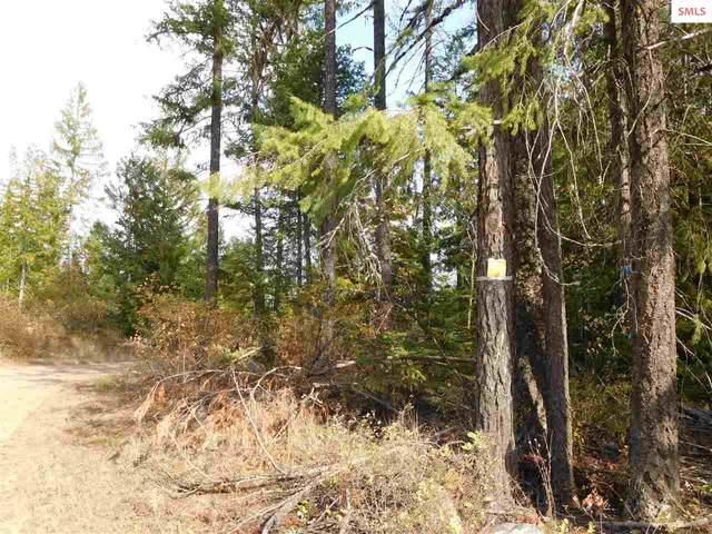 NNA Cabin Ridge Rd Spirit Lake ID, Spirit Lake, ID 83869 (#20203036) :: Northwest Professional Real Estate