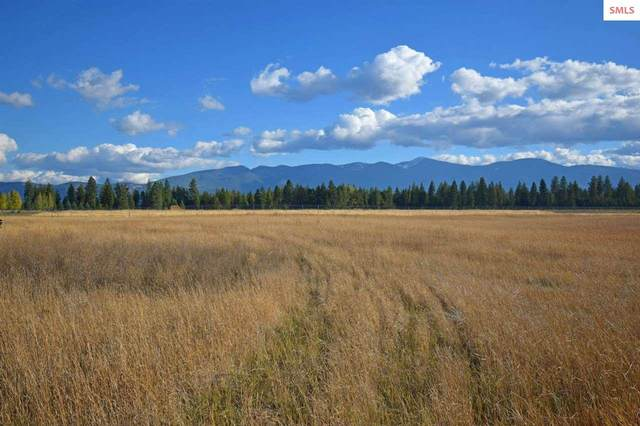 Lot 8 Great Northern Rd, Bonners Ferry, ID 83805 (#20203127) :: Mall Realty Group
