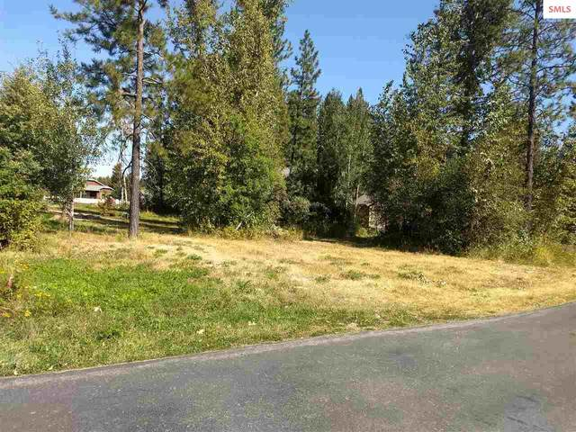 508 Hornby Place, Dover, ID 83825 (#20203172) :: Northwest Professional Real Estate