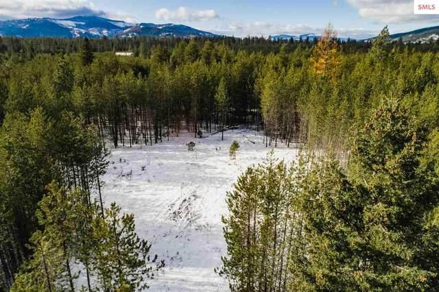 1344 Peregrine Rd, Spirit Lake, ID 83869 (#20203336) :: Northwest Professional Real Estate