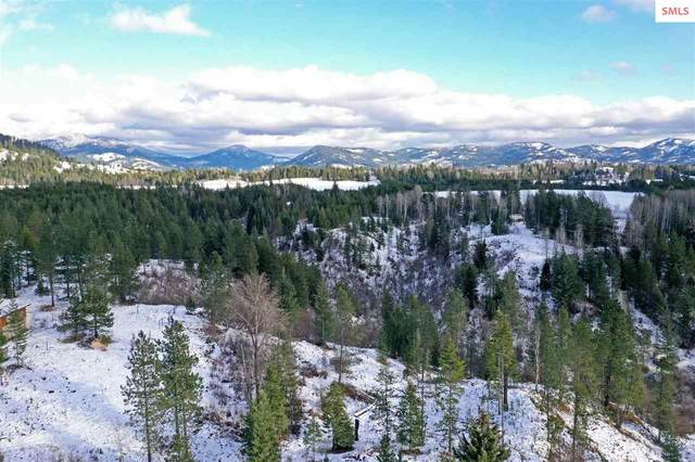 NKA Bear Road, Priest River, ID 83856 (#20203355) :: Northwest Professional Real Estate