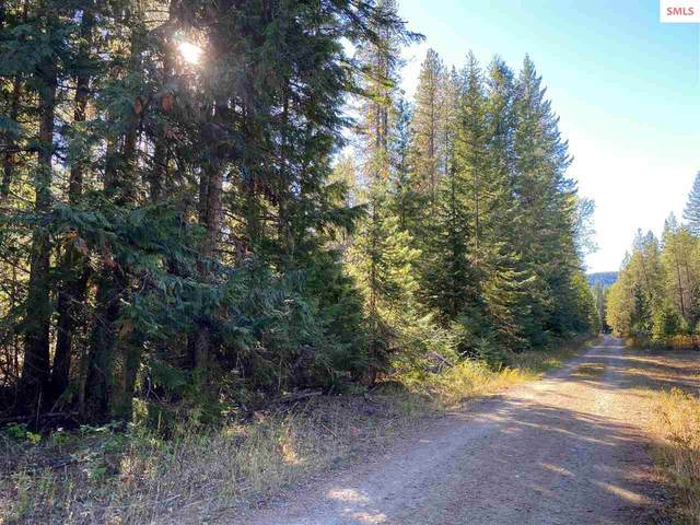 NKA Camelot Lane, Priest River, ID 83856 (#20203380) :: Northwest Professional Real Estate