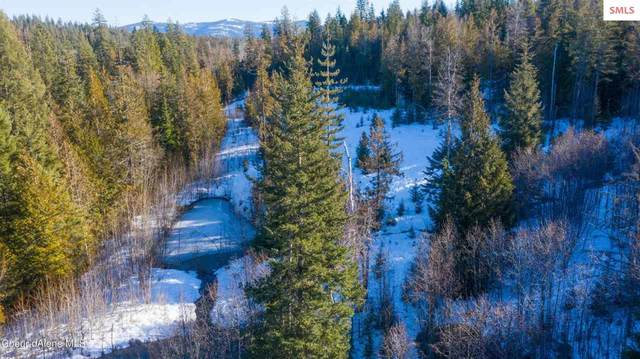 NKA Merril Martin Road, Sagle, ID 83860 (#20210120) :: Northwest Professional Real Estate