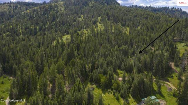 NKA Railroad Grade Tract 1, St Maries, ID 83861 (#20210128) :: Northwest Professional Real Estate
