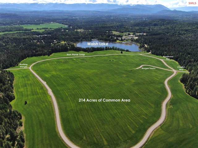 Lot 8 Iron Horse Loop, Sandpoint, ID 83864 (#20210712) :: Heart and Homes Northwest