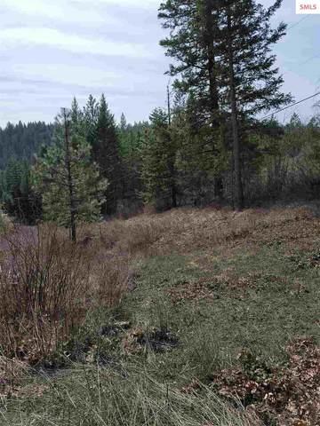 NKN Mountain Trail Ln, Newport, WA 99156 (#20210742) :: Heart and Homes Northwest