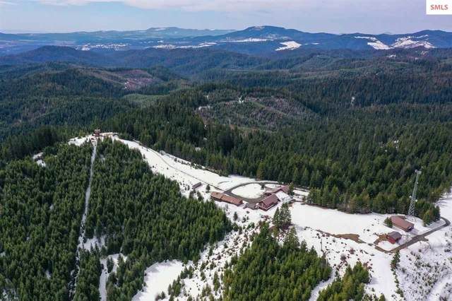 176 Palouse Divide, St Maries, ID 83861 (#20210824) :: Heart and Homes Northwest