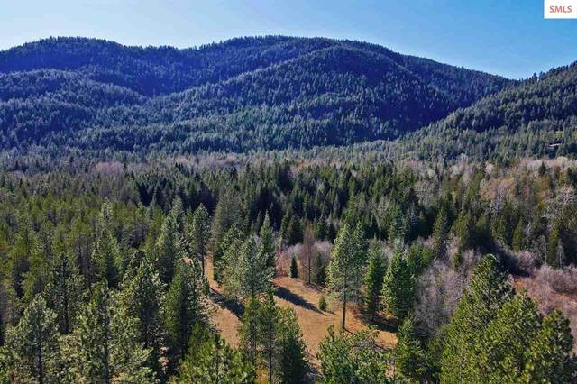 479450 Hwy 95, Sandpoint, ID 83864 (#20210895) :: Mall Realty Group