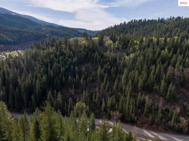 Terror Gulch Road, Osburn, ID 83849 (#20211068) :: Heart and Homes Northwest