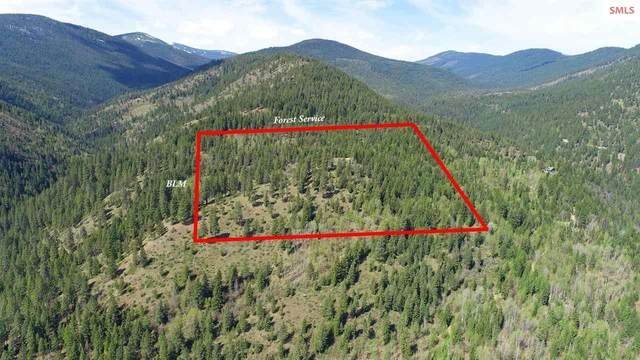 1682 Lions Den Rd, Bonners Ferry, ID 83805 (#20211082) :: Mall Realty Group