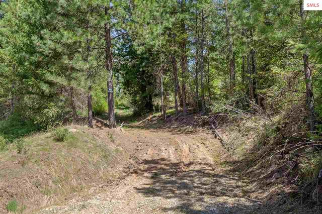 10822 S Carlin Bay Road, Harrison, ID 83833 (#20211149) :: Heart and Homes Northwest