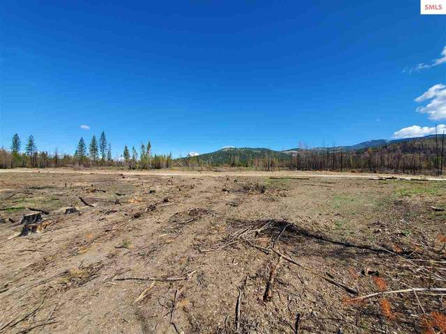 611 Flying Geese Way, Blanchard, ID 83804 (#20211505) :: Northwest Professional Real Estate