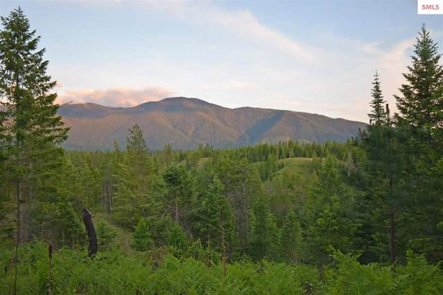 NNA Paradise Valley Rd, Bonners Ferry, ID 83805 (#20211588) :: Mall Realty Group