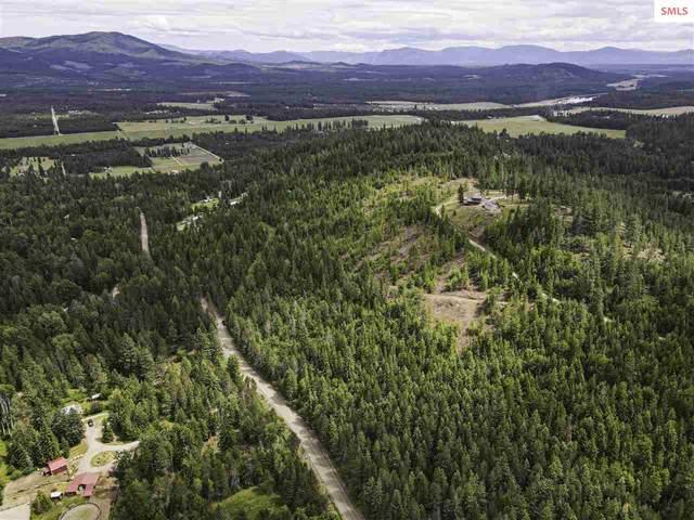 NNA Hoodoo Mountain Rd, Priest River, ID 83856 (#20211624) :: Northwest Professional Real Estate