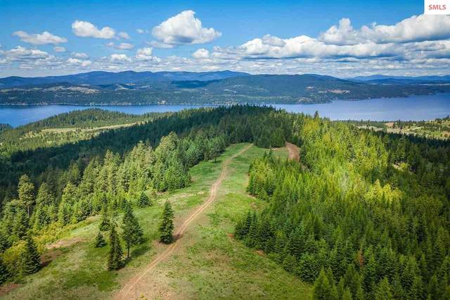 17894 S Hungry Hollow Dr, Harrison, ID 83833 (#20211767) :: Mall Realty Group