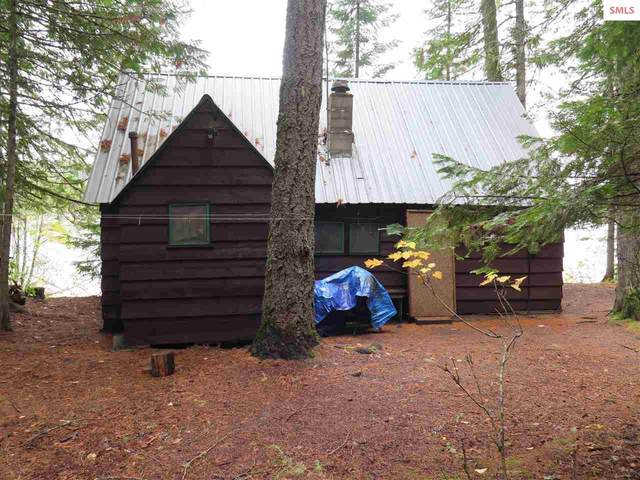 1563 W Pearl Shore Rd, Priest Lake, ID 83856 (#20212088) :: Northwest Professional Real Estate