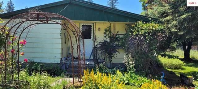 8 Bryan Drive, Clark Fork, ID 83811 (#20212113) :: Northwest Professional Real Estate