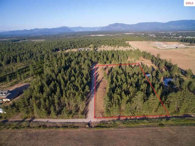 L3B1 N Sheep Springs Rd, Athol, ID 83801 (#20212177) :: Heart and Homes Northwest