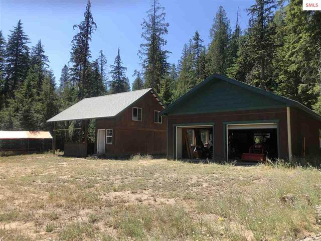 81 Soggy Bottom Ln, Cusick, WA 99119 (#20212247) :: Northwest Professional Real Estate