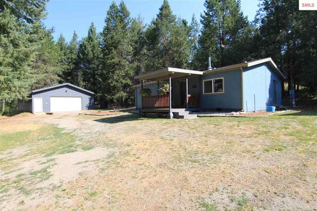 393 Mountain View Rd, Blanchard, ID 83804 (#20212253) :: Northwest Professional Real Estate