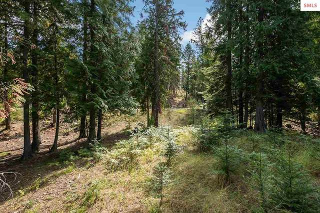 NNA White Cloud Drive C33, Sandpoint, ID 83864 (#20212297) :: Mall Realty Group