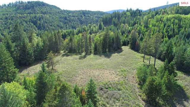 Parcel 2 Otter Lane, Naples, ID 83847 (#20212898) :: Heart and Homes Northwest