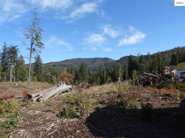 NNA (3102A) Whitepine Way, Priest River, ID 83856 (#20213028) :: Real Estate Done Right