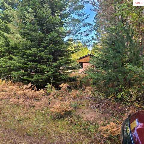 1006 Sitting Bull Rd, Samuels, ID 83862 (#20213036) :: Mall Realty Group