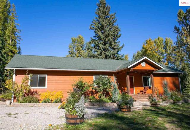850 Cedar Springs Rd, Sandpoint, ID 83864 (#20213060) :: Real Estate Done Right