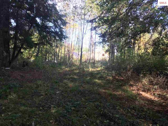 Lot I1 Lunch Peak Lane, Sandpoint, ID 83864 (#20213069) :: Real Estate Done Right