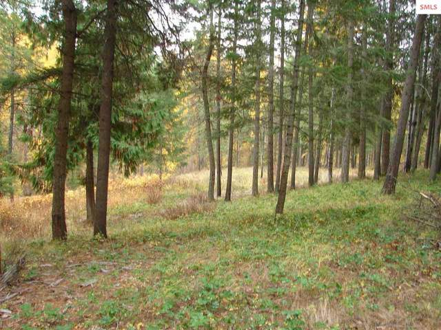 NNA Meadow Creek Road, Bonners Ferry, ID 83805 (#20213087) :: Heart and Homes Northwest