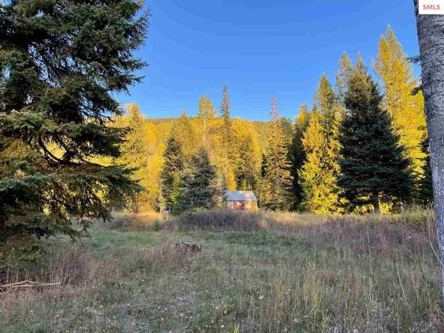 562 Fortyniner Ln, Bonners Ferry, ID 83805 (#20213033) :: Real Estate Done Right