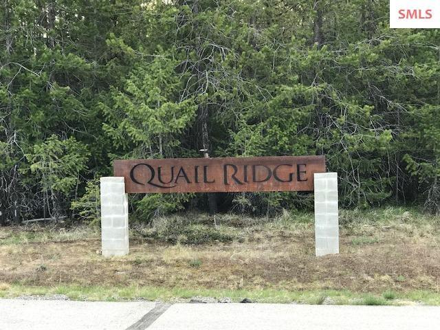 BLK 1 LT 2A Goldfinch Ln., Spirit Lake, ID 83869 (#20191118) :: Northwest Professional Real Estate