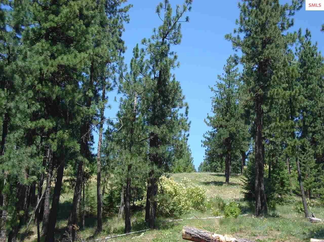 NNA S. Bobsled Trail - Photo 1