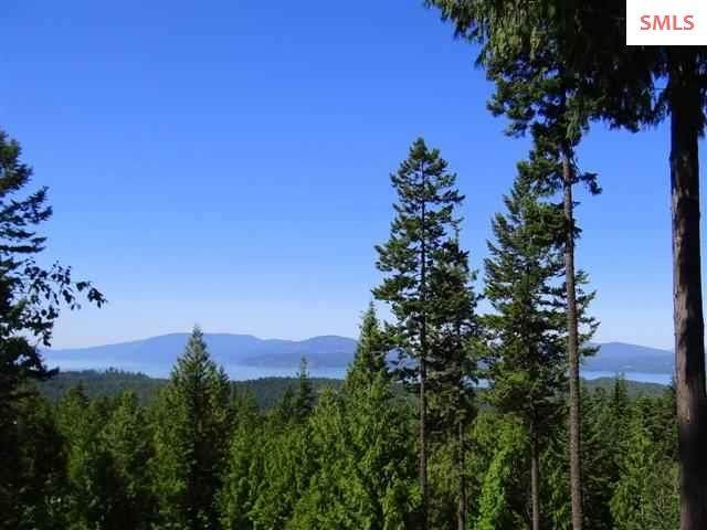 6 Sunset View, Hope, ID 83836 (#20200385) :: Mall Realty Group