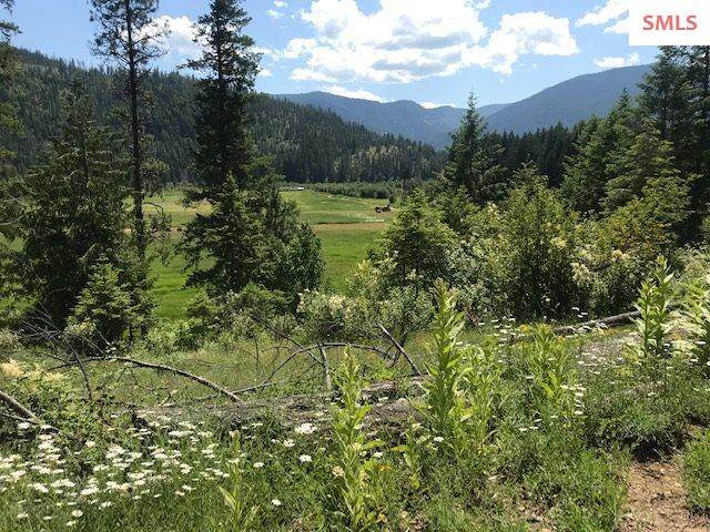 388B Mosquito Cr Road, Clark Fork, ID 83811 (#20201894) :: Northwest Professional Real Estate