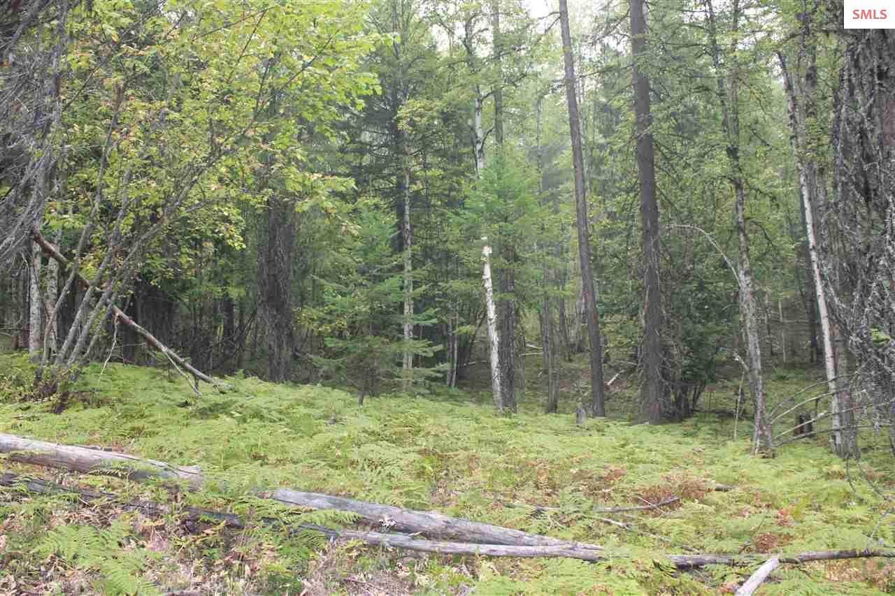 NKA Raven Ridge  ( 10 Acres ) - Photo 1