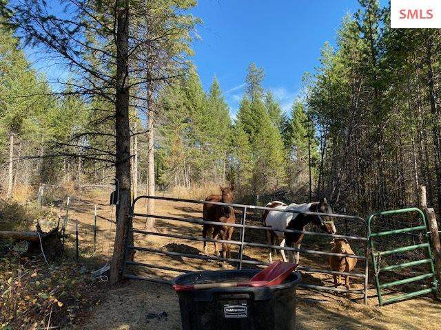 Blk 1 Lot 16 Torrens Trail, Spirit Lake, ID 83869 (#20203083) :: Mall Realty Group