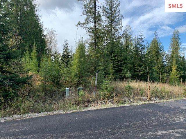NNA  C41 Trappers Loop, Sandpoint, ID 83864 (#20203182) :: Northwest Professional Real Estate