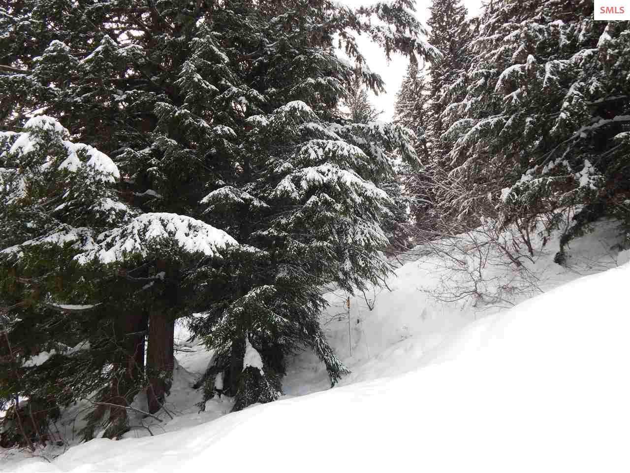 NKA Snowplow Rd. - Photo 1