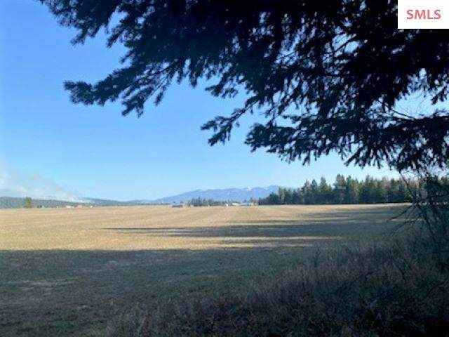 246 Likely Way Parcel B, Bonners Ferry, ID 83805 (#20210885) :: Mall Realty Group