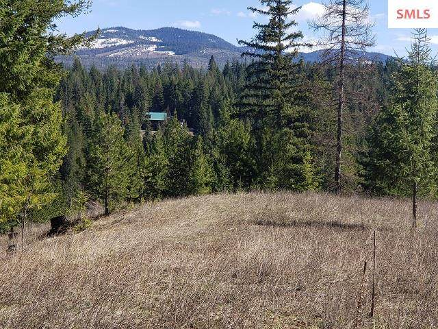 Parcel A Pleasant Valley Loop Rd, Naples, ID 83847 (#20210899) :: Mall Realty Group