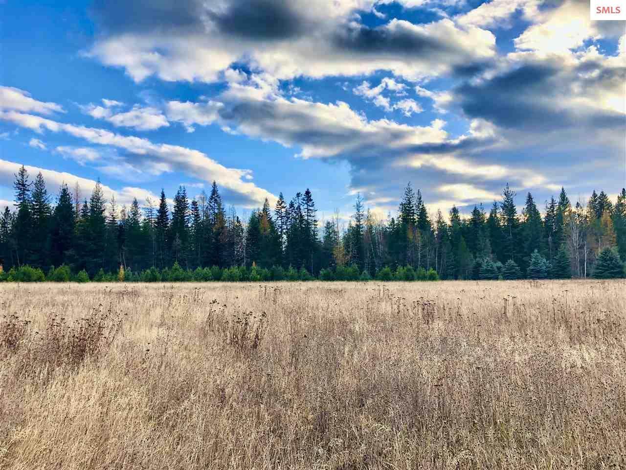 534 Saddleback Drive - Photo 1