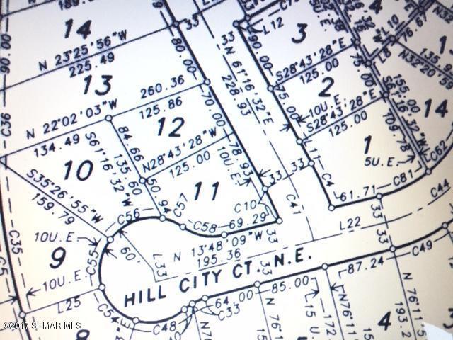 1236 Hill City Court NE, Pine Island, MN 55963 (MLS #4085257) :: Team Nordaune