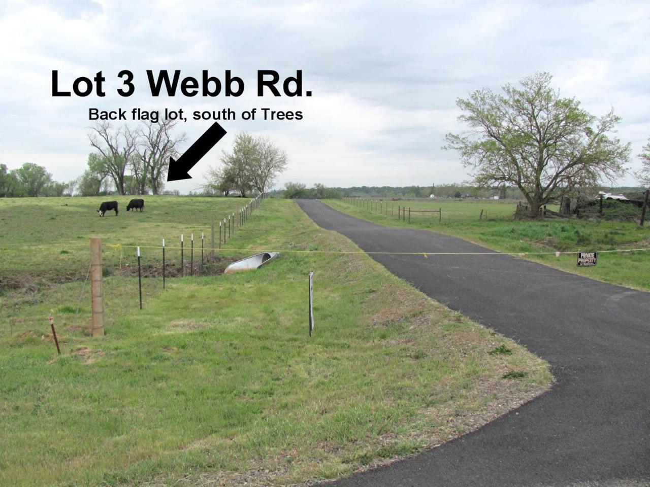 5.5 ac. Webb Rd - Photo 1